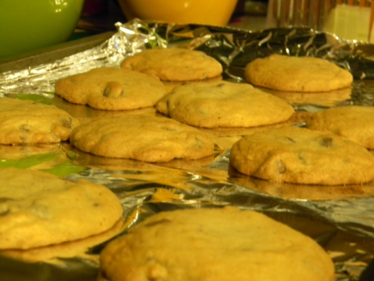 MMMMMM... Chocolate Chip Cookies